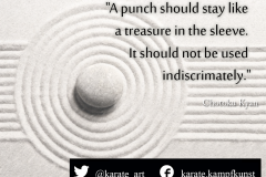karate-quote-31