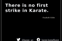 karate-quote-48