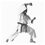 Kata lernen, Tipp 1: Optimiere einzelne Techniken