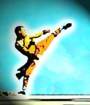 Julian W.: Karate ist doch wie jede andere Kampfkunst auch Kung Fu oder?