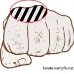 Perfektion - die Waffe des Karateka