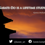 karate quote