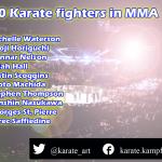 Gibt es auch Karate Kämpfer in UFC / MMA Kämpfen