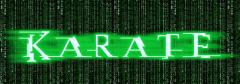 karate_matrix