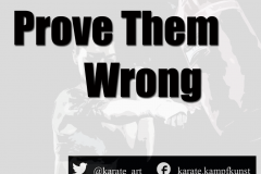 prove them wrong kartequote, karatequotes, quote, quotes