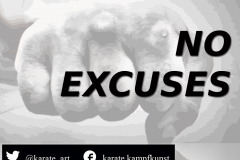 NO EXCUSES kartequote, karatequotes, quote, quotes