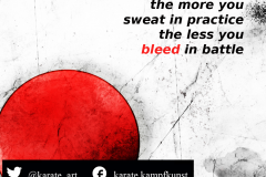 the more you sweat in practice, the less you bleed in battle. kartequote, karatequotes, quote, quotes