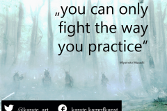 You can only fight the way you practice. kartequote, karatequotes, quote, quotes