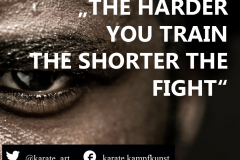the harder you train, the shorter the fight. kartequote, karatequotes, quote, quotes