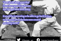 karate-quote-25