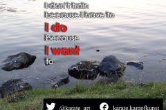 karate-quote-34