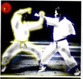 karate1 kartequote, karatequotes, quote, quotes