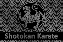 shotokan-karate