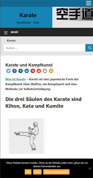 mobile-karate-2