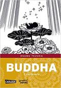 buddha-klein