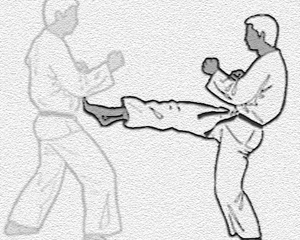karate-kata-bild