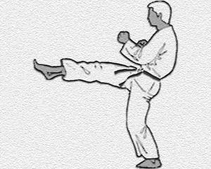 karate-kihon-bild