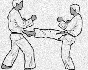 karate-kumite-bild