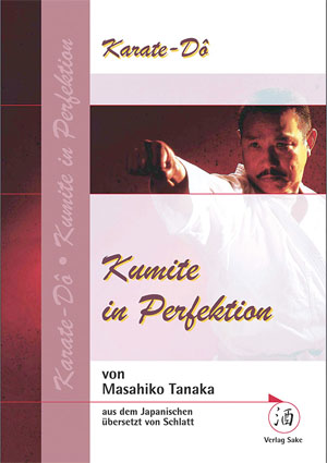 Kumite in Perfektion
