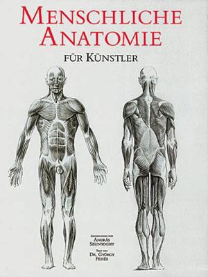 menschliche-anatomie-kuenstler